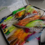 peacock bass flies